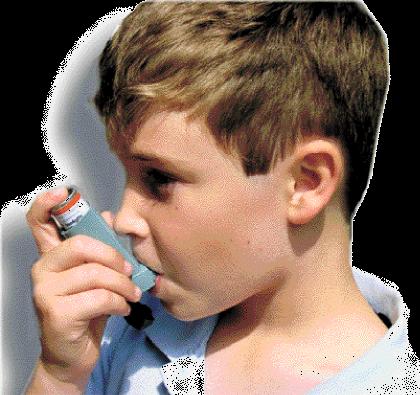 Estaciones perjudiciales para alérgicos y asmáticos